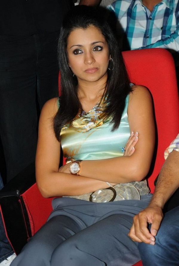 Trisha at 'Dammu' Movie Audio Launch Event