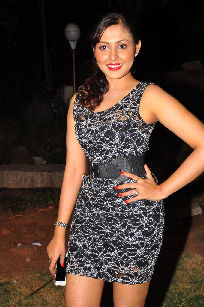 Madhu Shalini Photocall at 'DK Bose' Music Launch